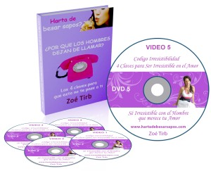 hartadebesarsapos_taller_videos_ebook
